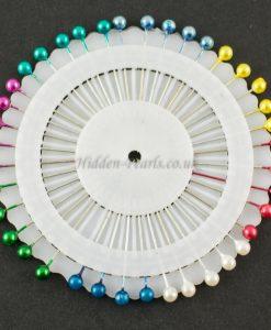 Small Multi coloured Pinwheel